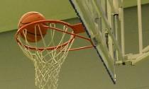 Basketball (Large)
